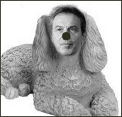 picture of Tony Blair as a poodle