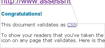 picture of css validated page